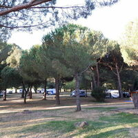 camping ciamous